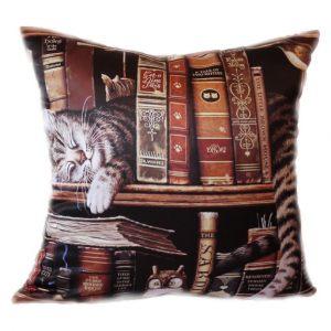 Декоративная подушка квадратная Книголюб
