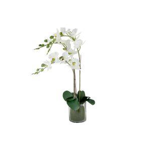"""Декоративные цветы """"Орхидея белая"""" в стеклянной вазе"""