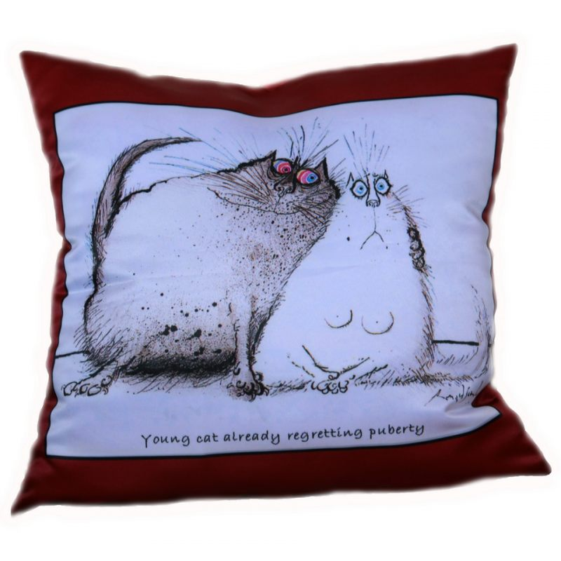 Подарок, прикольные картинки про подушки